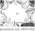 Hand Drawn Frame of Fresh Fig and Guava 38057262