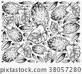 Hand Drawn Background of Horned Melon or Kiwano 38057280