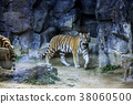 Animals in a zoo. various wild animals photo. 136 38060500