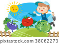 蔬菜 菜園 原野 38062273