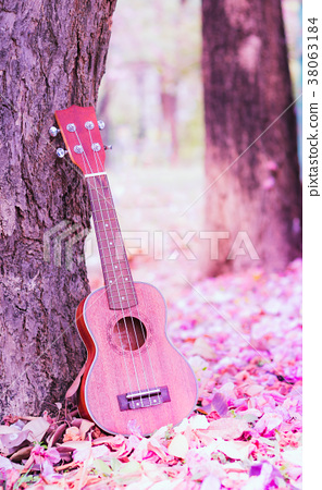 ukulele 38063184