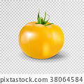 Yellow tomato. Realistic vector illustration 38064584