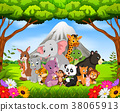 wild animal in the jungle 38065913