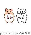 Cute Red Eyes Hamster 38067019