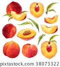 Watercolor peach set 38073322