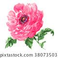 花朵 花 花卉 38073503