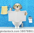 Dog sitting on a toilet seat and writing 38078861