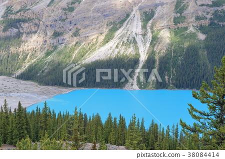 캐나다 보우 호수 38084414