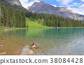캐나다 풍경 38084428