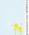 배경 소재 _ 유채 꽃과 나비 (블루) 38089033