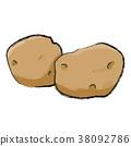 矢量 蔬菜 土豆 38092786