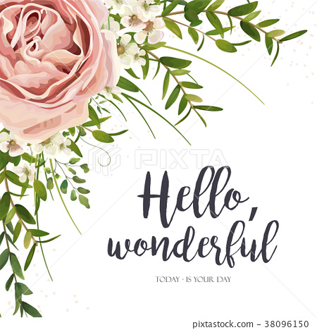 Vector Card Floral Design Purple Pink Rose Flower 插圖素材