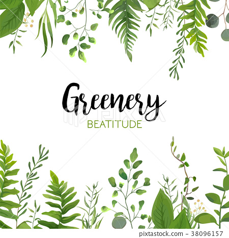 Vector floral greenery card design with leaves 38096157