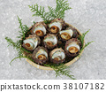 turban shell, grilled in shell, sashimi 38107182