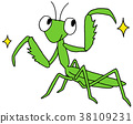 mantis, a mantis, praying mantis 38109231