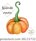 Vector watercolor pumpkin isolated. Hand painted 38115732