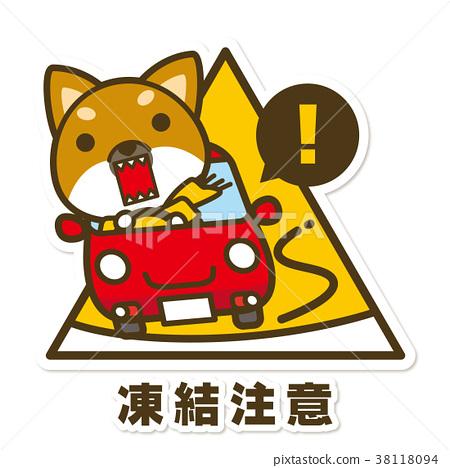 dog, dogs, Shiba 38118094