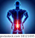 3D Illustration of sacral spine painful. 38121095