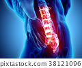3D Illustration of sacral spine painful. 38121096