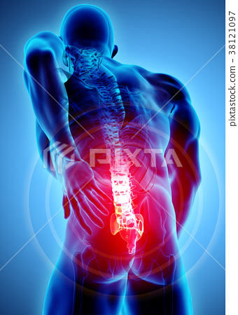 3D Illustration of sacral spine painful. 38121097