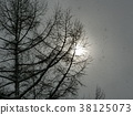 白雪皚皚 雪景 積雪 38125073