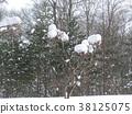白雪皚皚 雪景 積雪 38125075