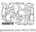 Cute cartoon ferrets set in outline. Vector 38127203