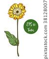 flower, vector, leaf 38128007