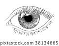 eye woman vector 38134665