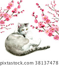 Pink plum branch and cat painted by watercolor 38137478