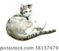 White and gray cats painted by watercolor 38137479
