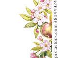 Apple frame botanical illustration. Card design 38144924