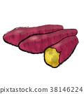蔬菜 紅薯 地瓜 38146224