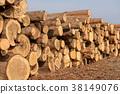 통나무 목재 38149076