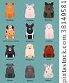 矢量 動物 豬 38149581