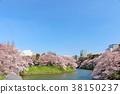 ฤดูใบไม้ผลิของโตเกียว Chidorigafuchi 38150237