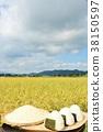 秋天米领域和碗米饭团 38150597