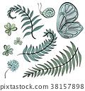 羊齒草 樹葉 向量 38157898