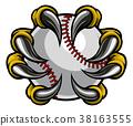 Monster claw holding Baseball Ball 38163555