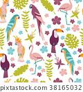 bird, tropical, drawing 38165032