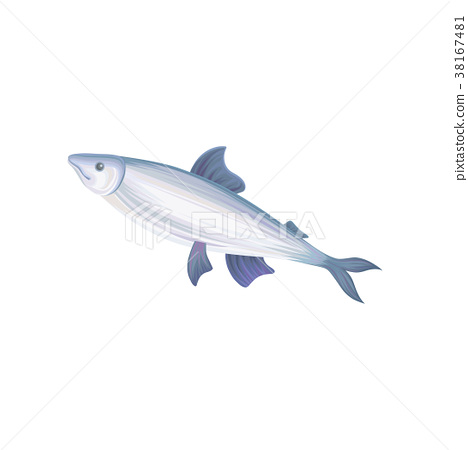 Flat vector icon of tuna fish with blue fins 38167481