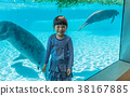Manatees in the zoo with little girl 38167885