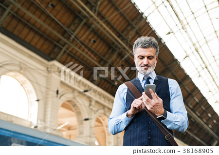 Mature businessman with smartphone on a train 38168905