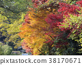 fall nature view of Yase Hieizan Guchi 38170671