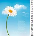 sky, blue, sunny 38173464