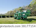 field, charleston, wood 38177154