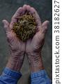 marijuana joint weed smoking close up 38182627