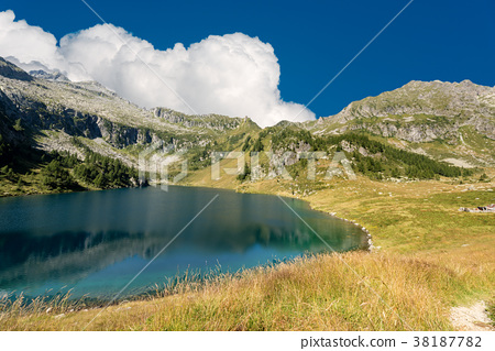 Camp Lake - Lago di Campo - Trento Italy 38187782