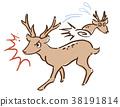 싸움, 사슴, 도망 38191814