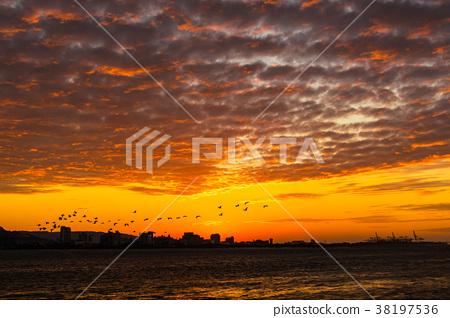 台灣,淡水,日落,落日,熾熱的雲 38197536